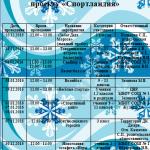 Проект  на зимние каникулы Спорт