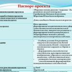 проект паспорт